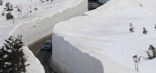 Снежные новости