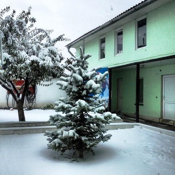 Первый снег ода в фото и картинах