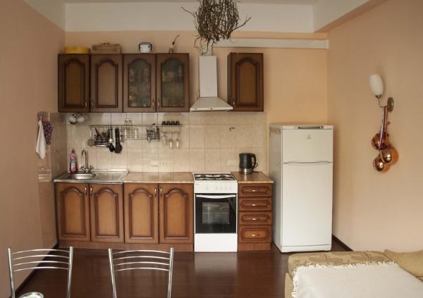 Апартпменты на турчинсткого 50 в Красной Поляне. Гостинная - кухня